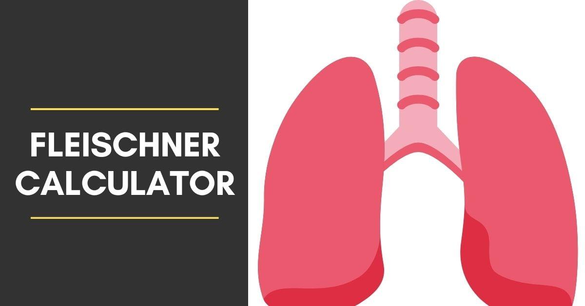 Fleischner Calculator for lung nodules